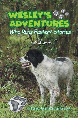 Wesley's Adventures: