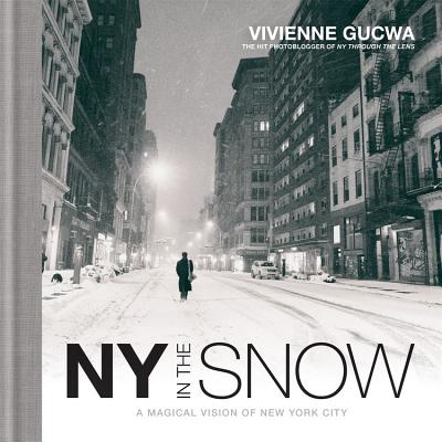 New York in the Snow Cover Image