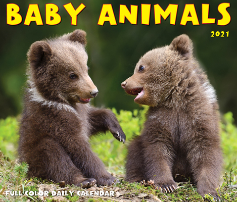 Baby Animals 2021 Box Calendar Cover Image