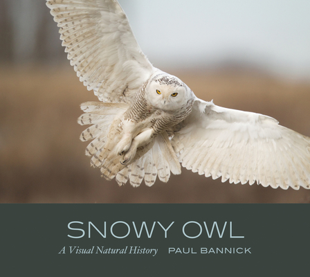 Snowy Owl: A Visual Natural History Cover Image