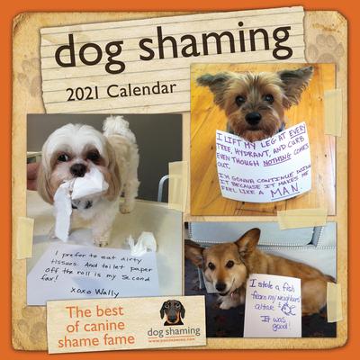Dog Shaming 2021 Wall Calendar Cover Image