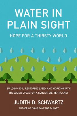 Water in Plain Sight: Hope for a Thirsty World Cover Image