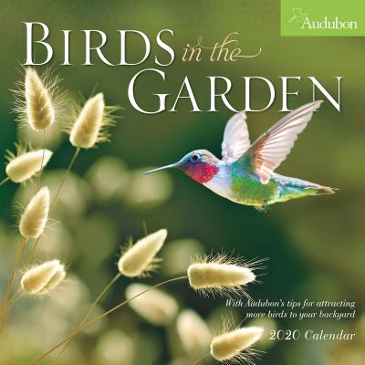 Audubon Birds in the Garden Wall Calendar 2020 Cover Image