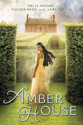 Amber House Cover