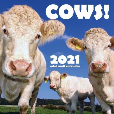 Cows! 2021 Mini Wall Calendar Cover Image