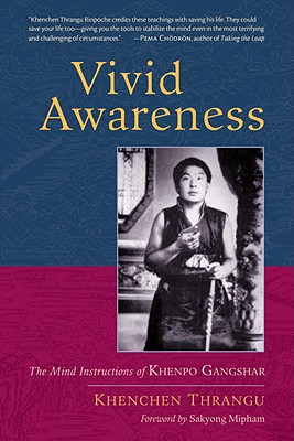 Vivid Awareness Cover