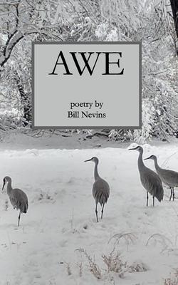 Awe Cover Image