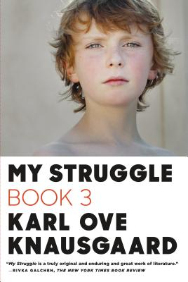 My Struggle: Book 3 Cover Image
