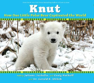 Knut Cover