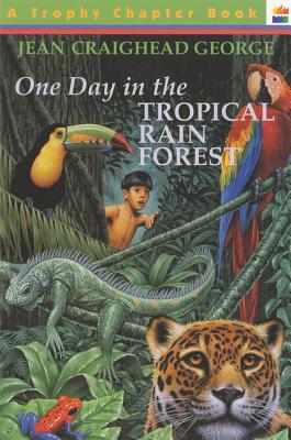 One Day in the Tropical Rain Forest Cover