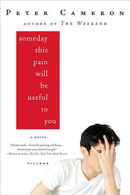 Someday This Pain Will Be Useful to You: A Novel Cover Image