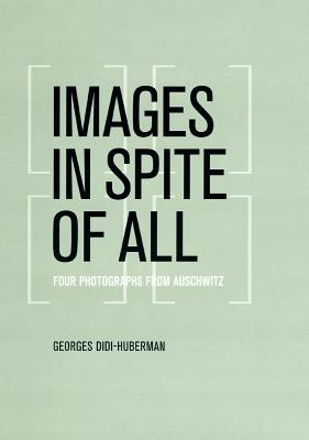 Cover for Images in Spite of All