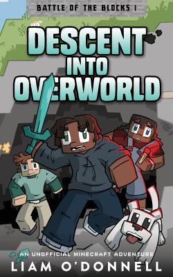 Descent Into Overworld Cover