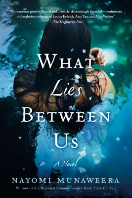 Cover for What Lies Between Us