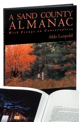 A Sand County Almanac (Outdoor Essays & Reflections) Cover Image