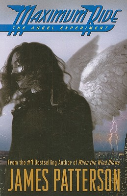 The Angel Experiment Cover Image