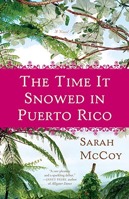 The Time It Snowed in Puerto Rico Cover Image
