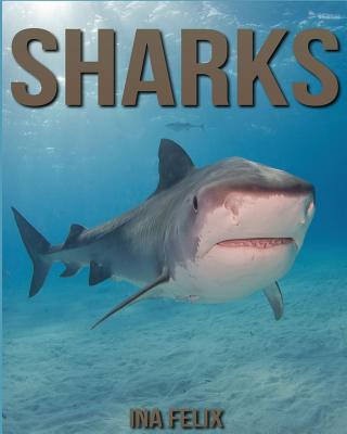 Sharks: Children Book of Fun Facts & Amazing Photos on Animals in Nature - A Wonderful Sharks Book for Kids aged 3-7 Cover Image