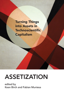 Cover for Assetization