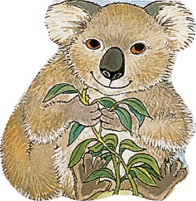 Pocket Koala Cover