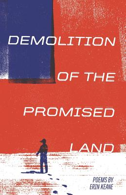 Cover for Demolition of the Promised Land