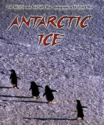 Antarctic Ice Cover