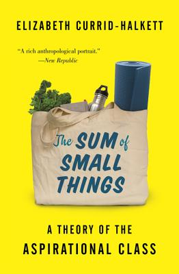 The Sum of Small Things: A Theory of the Aspirational Class Cover Image