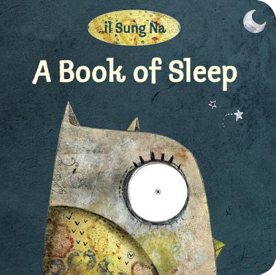 A Book of Sleep Cover Image