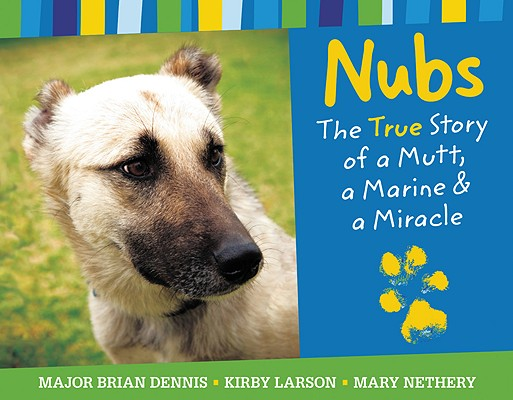 Nubs Cover