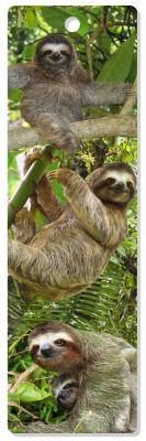 3D Bookmark Sloths Cover Image