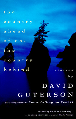 The Country Ahead of Us, The Country Behind (Vintage Contemporaries) Cover Image