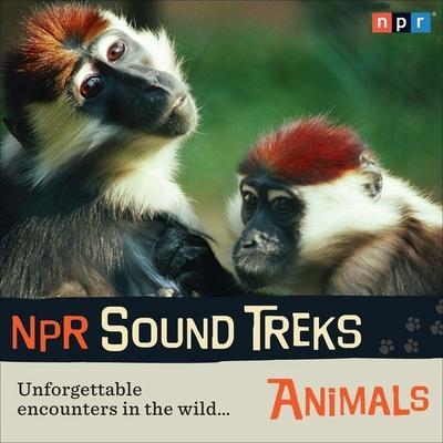NPR Sound Treks: Animals Lib/E: Unforgettable Encounters in the Wild Cover Image