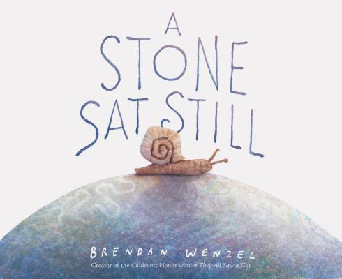 A Stone Sat Still: (Environmental and Nature Picture Book for Kids, Perspective Book for Preschool and Kindergarten, Award Winning Illustrator) Cover Image
