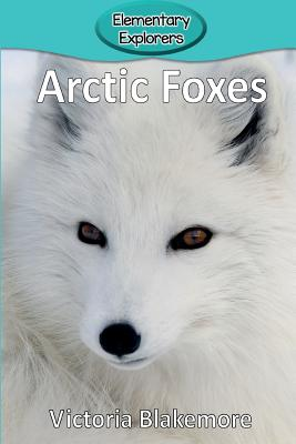 Arctic Foxes (Elementary Explorers #19) Cover Image