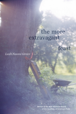 The More Extravagant Feast: Poems Cover Image