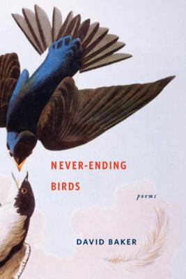 Never-Ending Birds Cover