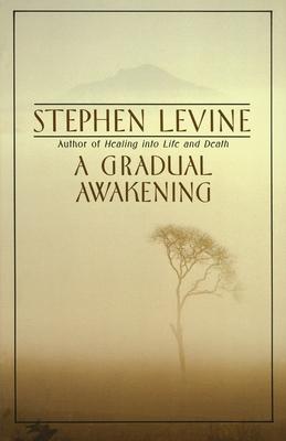 A Gradual Awakening Cover