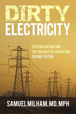 Dirty Electricity: Electrification and the Diseases of Civilization Cover Image