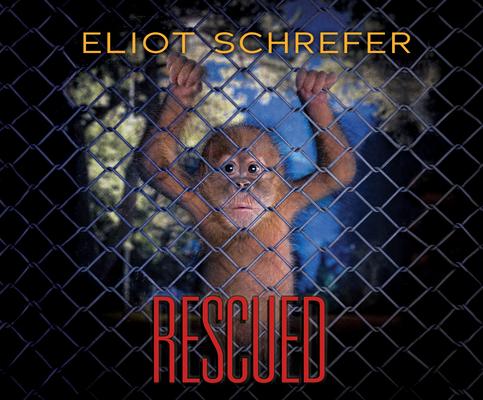 Cover for Rescued (Ape Quartet #3)