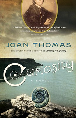 Curiosity: A Love Story Cover Image