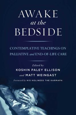 Awake at the Bedside: Contemplative Teachings on Palliative and End-Of-Life Care Cover Image