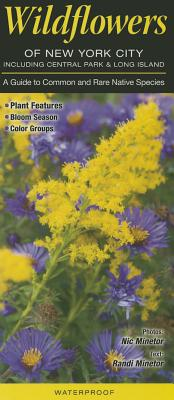 Wildflowers of New York City, Incl. Central Park & Long Island: A Guide to Common & Rare Native Species Cover Image