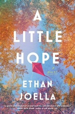 A Little Hope: A Novel Cover Image