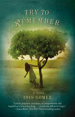Try to Remember Cover