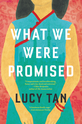 Cover for What We Were Promised
