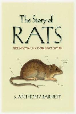 Cover for The Story of Rats