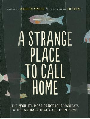 A Strange Place to Call Home Cover