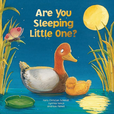 Are You Sleeping Little One? Cover