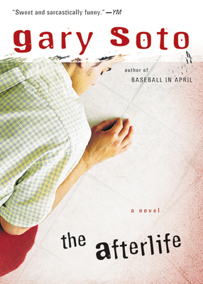 The Afterlife Cover Image