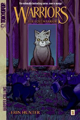 The Lost Warrior Cover